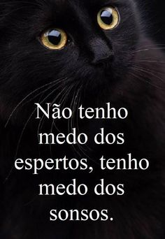 Que olha no fundo da minha Alma como ninguém Sad Love Quotes, Words Quotes, Best Quotes, Sayings, Motivational Phrases, Inspirational Quotes, Cogito Ergo Sum, Figure Of Speech, Postive Quotes