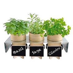 Mini Chalkboard Food Sign and Place Cards with Easel Stand and Chalk (10 Sets)