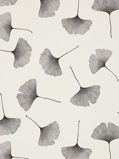 Marimekko Biloba Wallpaper, Black /