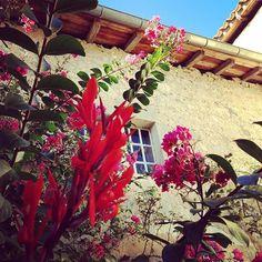 Beautiful day in Poudenas !! #flowers #colors #chateaudepoudenas #poudenas #beautiful #sunnyday #gascony #lotetgaronne #gers #amazing #patrimoine #instamoment #rouge #rose #plant #powerfull #demeurehistorique #venez #cometosee #bluesky #awesome #love #igersfrance #igersagen #villagedefrance #mafrance #douxsouvenir