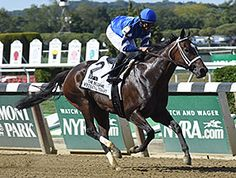 Wedding Toast ~The 5-year-old daughter of Street Sense went wire-to-wire in the $400,000 Beldame Stakes (gr. I) at Belmont Park to win her second consecutive grade I (9/26/15)