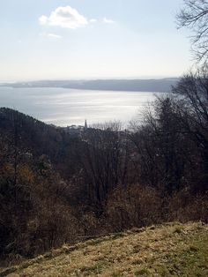 Frühling am See 2 - Spring Lake of Constance