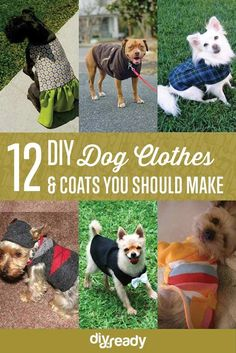 Seeing dogs wearing fancy DIY dog clothes bring such joy to me. That's why whenever I get the chance, I upcycle some of our old clothes to make dog clothes and coats for our furry pet. 12 DIY dog clothes and coats to make Dog Clothes Patterns, Animal Projects, Fun Projects, Halloween Disfraces, Dog Sweaters, Dog Coats, Dog Shirt, Diy Stuffed Animals, Pet Clothes