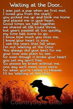 Pet Quotes Dog, Pet Loss Quotes, Animal Quotes, Losing A Dog Quotes, Love For Animals Quotes, Dog Quotes Love, Pet Loss Grief, Loss Of Dog, Phteven Dog