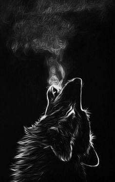 Home - Save gray wolf Lion Wallpaper, Animal Wallpaper, Iphone Wallpaper, Mobile Wallpaper, Anime Wolf, Fantasy Wolf, Fantasy Art, Black Paper Drawing, Wolf Artwork