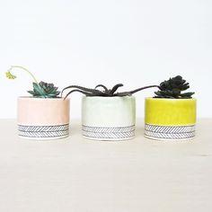 Herringbone Stripe Planter Cup | dotandbo.com