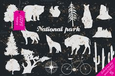 Check out National park by Eisfrei on Creative Market