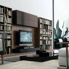 Glass Walls Tvs And Glasses On Pinterest