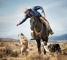 cowboy and friends