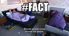 Geordie shore. Geordie shore quote. Charlotte. Marnie. Holly Hagan, Geordie Shore Quotes, Newcastle, Marni, Mtv, Charlotte, Tv Shows, House, Inspiration