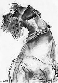 Supreme Portrait Drawing with Charcoal Ideas. Prodigious Portrait Drawing with Charcoal Ideas. Animal Paintings, Animal Drawings, Schnauzer Art, Miniature Schnauzer, Animal Projects, Art Graphique, Dog Portraits, Dog Art, Easy Drawings