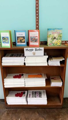 Harry Potter Muggle Studies