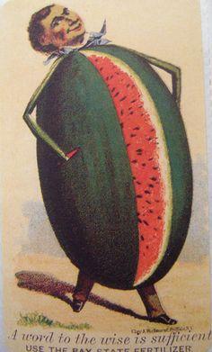 Vintage seed advertisement stickers