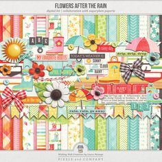 """Flowers After The Rain 