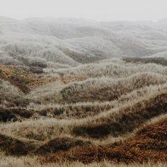 #landscapes