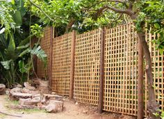 Attractive Free Standing Outdoor Privacy Screen | Free Standing Trellis