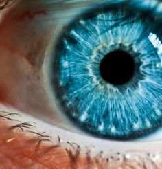Baby blue eye !!