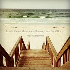 """""""Live in the sunshine, swim the sea, drink the wild air"""""""