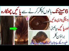 In 2 Hours Get Natural Brown Hair For 6 Months Color Your Hair, Hair Dye Colors, Brown Hair Colors, Hair Colour, Grey Hair Home Remedies, Homemade Hair Dye, Thicken Hair Naturally, Natural Brown Hair, Extreme Hair Growth