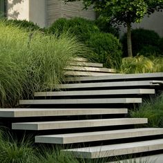 Garden stairs - Floating concrete steps by Page Duke Landscape Architecture Landscape Stairs, Landscape Plans, Landscape Architecture, Landscape Design, Architecture Design, Stairs Architecture, Design Patio, Terrasse Design, Outside Stairs