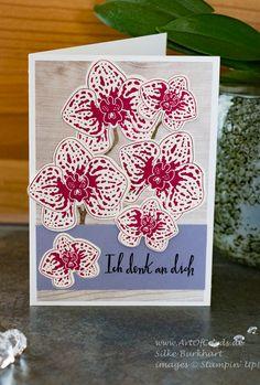 Grußkarte mit dem Stempelset Orchideenzweig und den Framelits Orchideenblüten von Stampin Up Card made using the stampset orchid builder