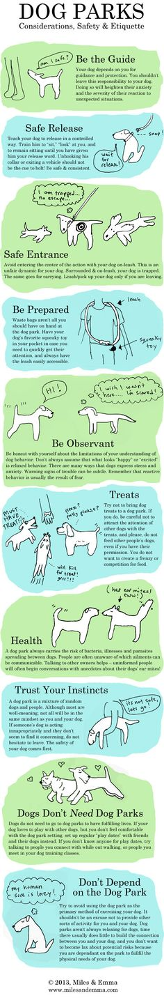 Learn about dog park considerations, safety, and etiquette.