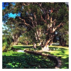A Walk in the Park III by mdomaradzki.deviantart.com