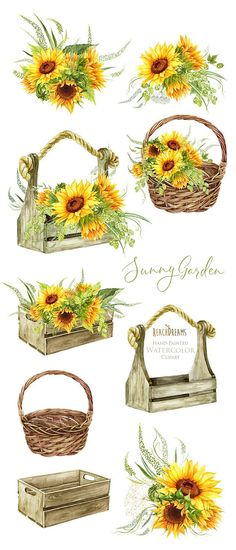 Sunflowers Watercolor Flower clipart Hand painted DIY Clip