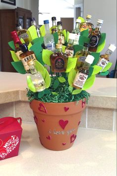 Booze Bouquet... I made this for my man for Valentine's Day.  Pretty simple to make.  Clay Pot. Foam ball (cut in half). Cover with Easter grass or something that resembles it. Make leaves from foam sheets from craft store.  Attach mini bottles to floral stakes... and there you have it.  He absolutely loved it.  A man's bouquet!