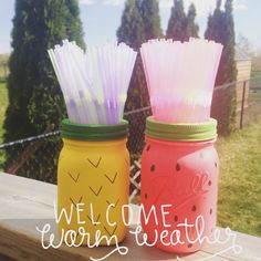 Pineapple and Watermelon Mason Jars by pintsizedcreationss on Etsy