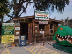 Black Hammock Fish Camp, Lots of good memories here! Oviedo Florida, Florida Trail, Acadia National Park Camping, Visit Florida, Fishing Life, Fish Camp, Travel Information, Best Memories, Vacation Trips