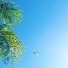 "#Madinina vue par @dixit972: ""Somewhere in paradise #picoftheday #photoshoot #instadaily #instagood #photooftheday #instalike #madinina #beautedesiles #beach #martinique #westindies #addict #travel #voyage"" #WeLike ! A voir sur Instagram : http://ift.tt/1s7fnZT"
