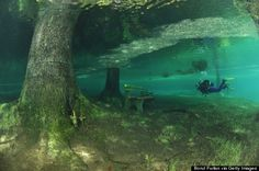 """Bucket List - scuba dive in the summer when Grüner See (""""Green Lake"""" in English) rises over the park-turned-lake just below Austria's Hochschwab mountains near the town of Tragoess."""