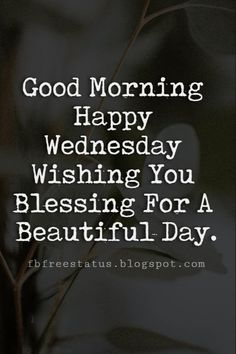 Happy Wednesday Pictures, Good Morning Happy Wednesday Wishing You Blessing For A Beautiful Day. Couldn't this be any day Funny Wednesday Quotes, Happy Wednesday Pictures, Wednesday Wishes, Good Morning Wednesday, Wednesday Motivation, Good Morning Happy, Good Morning Picture, Good Morning Greetings, Good Morning Quotes
