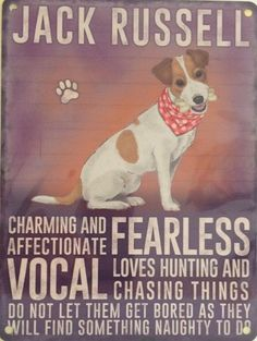 ❤️ Never a truer word spoken about this breed!