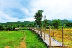 """""""สะพานซูตองเป้"""" คือ สะพานไม้ไผ่สานยาวร่วมๆ 500 เมตร ทอดตัวผ่านทุ่งนาอันเขียวขจีไปยังสวนธรรมภูสมะ อันมีฉากหลังเป็นภูเขา โดยมีมูลเหตุแห่งการสร้าง ก็เพื่อให้พระภิกษุสงฆ์ใช้เป็นเส้นทางสัญจรลงมาบิณฑบาตรในหมู่บ้าน  โดยสะพานแห่งนี้เกิดขึ้นจากความศรัทธาต่อพุทธศานาของชาวบ้าน ก่อนจะใช้ระยะเวลาในการก่อสร้างประมาณ 2 เดือน และได้หยิบยกเอาภาษาไทใหญ่คำว่า""""ซูตองเป้"""" อันหมายถึง """"ความสำเร็จ"""" มามอบให้กับสะพาน ฉะนั้นสะพานแห่งนี้ก็ไม่ต่างอะไรกันกับ """"สะพานแห่งความสำเร็จ"""" http://goo.gl/LY7yEd"""