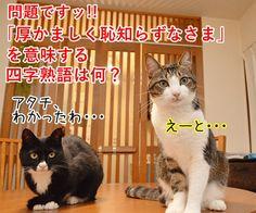 よいこのみんなッ 四字熟語クイズの時間だよッ!! - http://iyaiyahajimeru.jp/cat/archives/61637