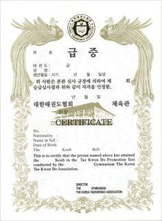 KTA Certificate of award 10sheets Eng Kor Taekwondo kukkiwon Korean TKD Korea #kzzang