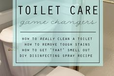 Toilet troubles plaguing your home? Check out these tips, products and DIY cleaner to leave your toilet sparkling clean.
