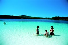 Queensland Travel provides travel and location information for your next holiday to QLD including all resorts, islands, travel packages and cruises. Places To See, Places Ive Been, Fraser Island, Next Holiday, Queensland Australia, Australia Travel, Travel List, Travel Destinations, Tourism