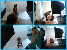 We had a whole bunch of dogs in our #Winnipeg head office on Friday for a photoshoot!