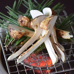 Matsutake Grill  焼き松茸  Aug.19th-  #kaiseki #cuisine #kitaohji #eel #matsutake #season  #japanesefood #instafood #foodpic #foodporn #japanesecuisine #yum #yummy #thonglor #bangkok #sukhumvit #อาหารญ by kitaohji_thailand