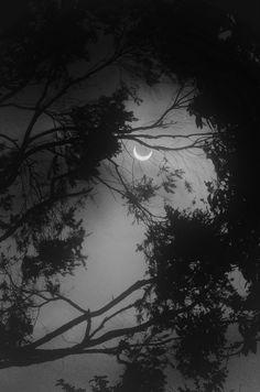 Ideas nature forest moonlight la luna rnrnSource by Beautiful Moon, Beautiful World, Beautiful Things, Ciel Nocturne, Shoot The Moon, Sun Moon Stars, Sky Moon, Moon Magic, Purple Sky