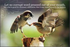 Ephesians 4:14-16 | Let no corrupt word proceed out of your mouth, but what is good for ...