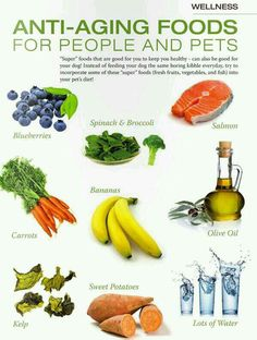 Anti-ageing foods (then again, ageing is a privilege denied to many people)