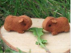 Felt piggies!!! free   patternhttp://www.thecrafties.com/files/guineapigpattern.pdf  http://www.thecrafties.com/2011/04/guinea-pig-pattern-revised/