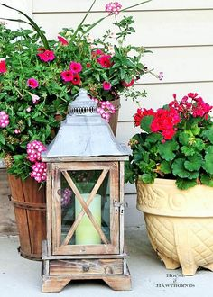 Pink flowers also look best, flowers are the best part of any house. Here you can see some lively color flowers placed in the best way in the house. if you don't have enough space to make a big garden in the house then try placing such ideas because they don't occupy a lot of space.