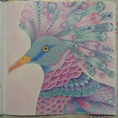 """#colouringbook #milliemarotta #tropicalwonderland #coloringbook #adultcoloringbook #fabercastell"""