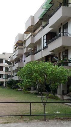4 BHK, Drawing-Dining Fully Furnished Sector 50, Chandigarh Rs 25000