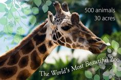 SB Zoo!   Adults 13-64: $14; Under 2: free